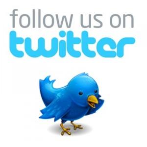 follow-us-on-twitter-bird_9b698